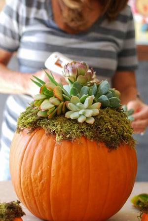 Charming DIY Centerpieces for Your Thanksgiving Table