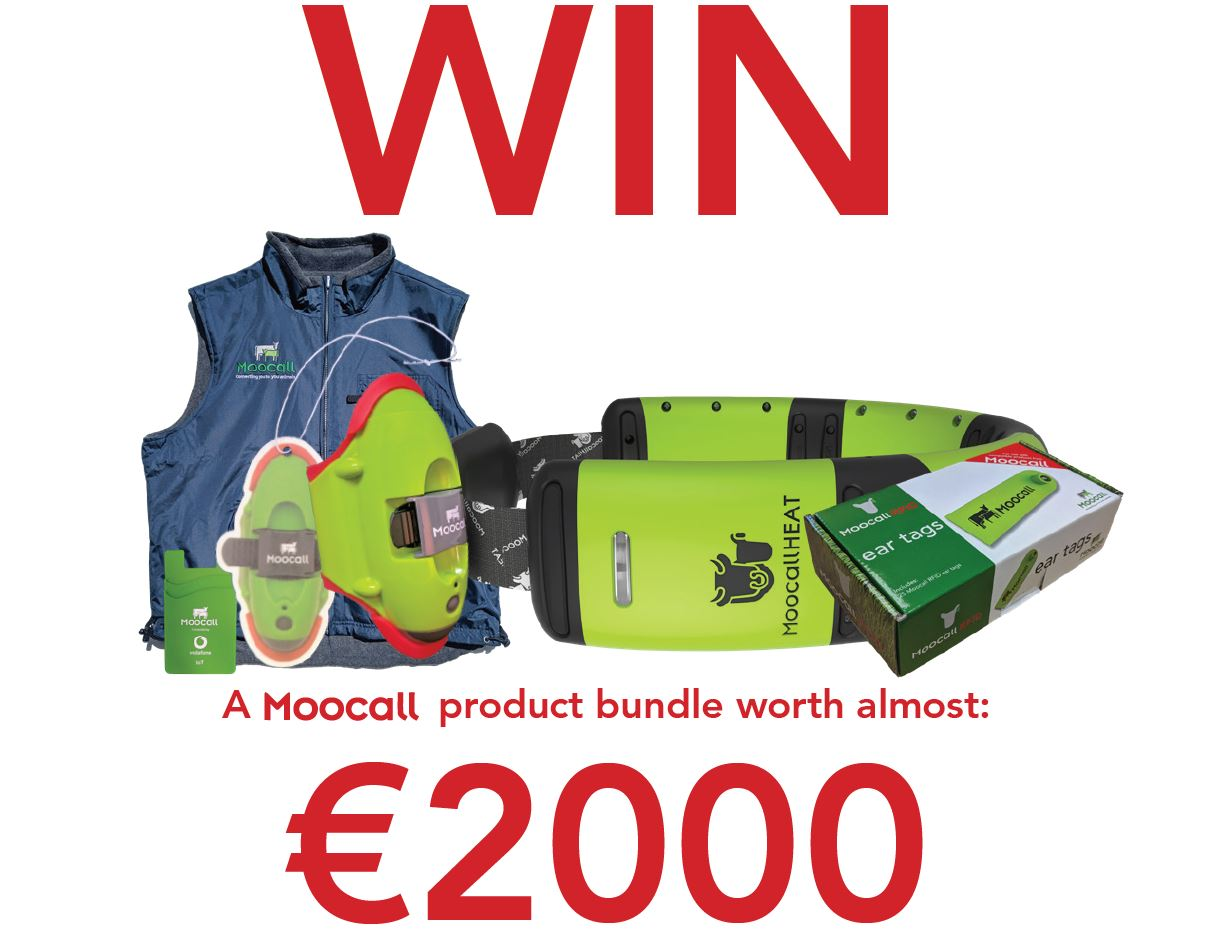 Moocall competition