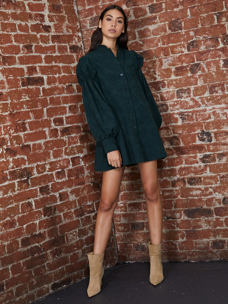 Search and Find Mini Shirt Dress