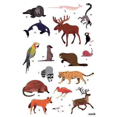 Poppik klistremosaikk i papir, Plakat og 67 klistremerker - Animals of the world