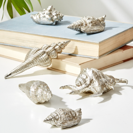 Ocean-Blu-Designs-Silver-Sea-Shells-Home-Decor-office-desk