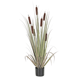 Faux Cattail Grass w/ Pot
