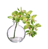 Faux Green Phalaenopsis in a Glass Vase