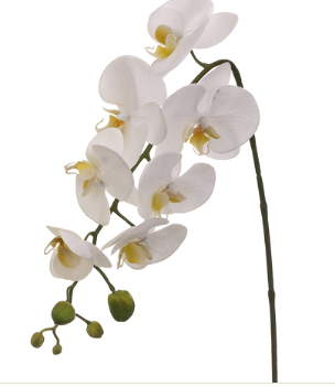 Faux White Phalaenopsis Orchid Stem 28.5""