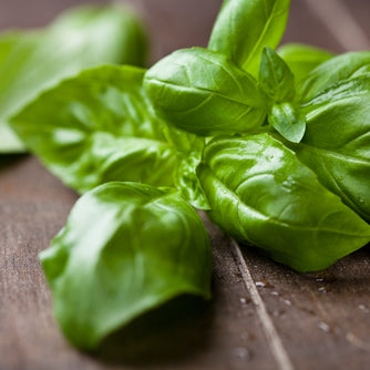 Basil Fused Olive Oil (Agrumato)