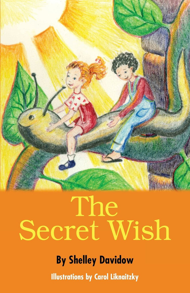 Secret Wish, by Shelley Davidow