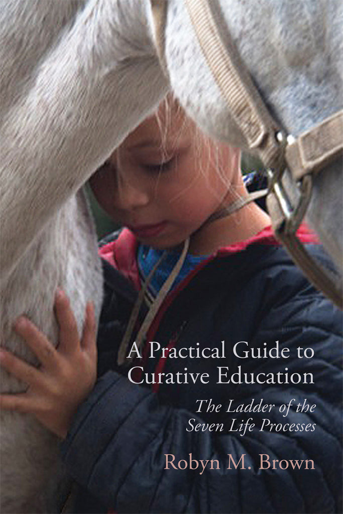 A Practical Guide to Cruative Education by Robyn M.Brown