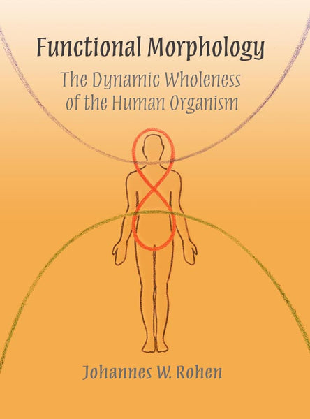 Functional Morphology, The Dynamic Wholeness of the Human Organism, by Johannes W. Rohen