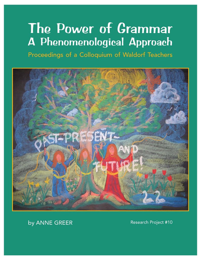 The Power of Grammar A Phenomenological Approach by Anne Greer