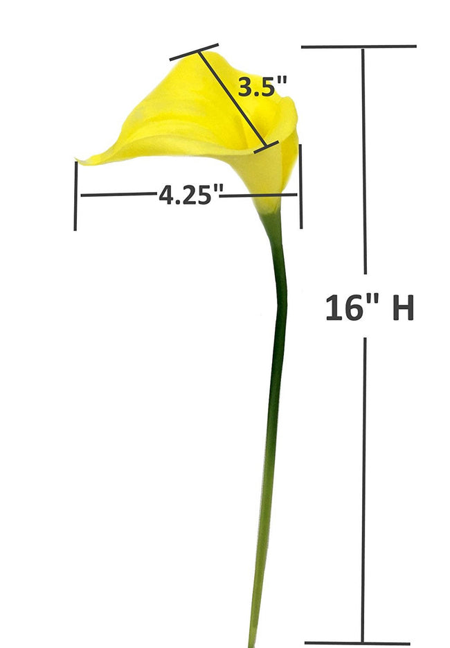 9-stem large Bloom calla lily - Angel Isabella