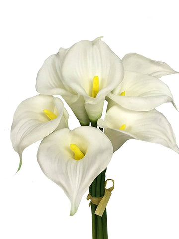 9-stem large Bloom calla lily