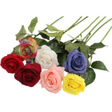 Pack of 12-Real Touch Medium Open rose stem