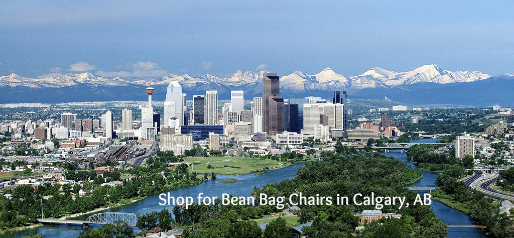 Shop for Bean Bags in Calgary