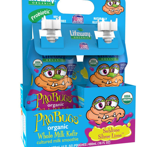 Lifeway ProBugs Sublime Slime Lime, 4 Oz (Pack of 6)