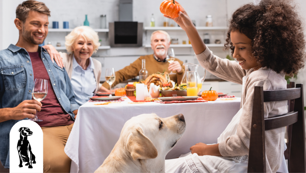 How to Make Your Dog Feel Like a Part of Your Family this Thanksgiving (And Year-Round)