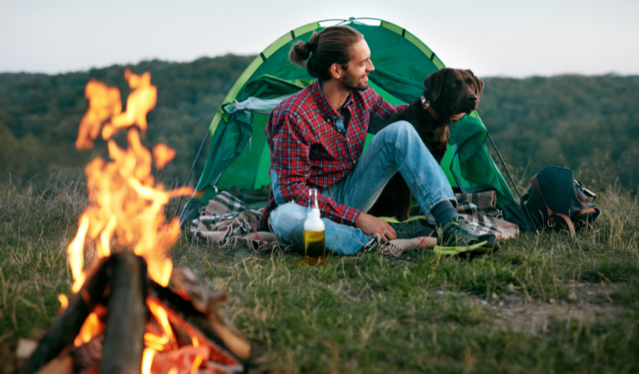 5 Fun Dog-Friendly Activities To Do With Your Dog This Summer