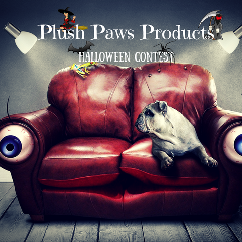 Plush Paws Products Halloween Contest