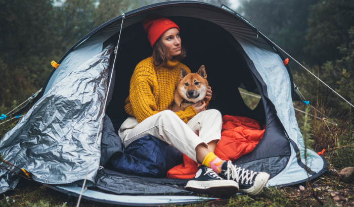 How to Prep for a Camping Trip with Your Dog