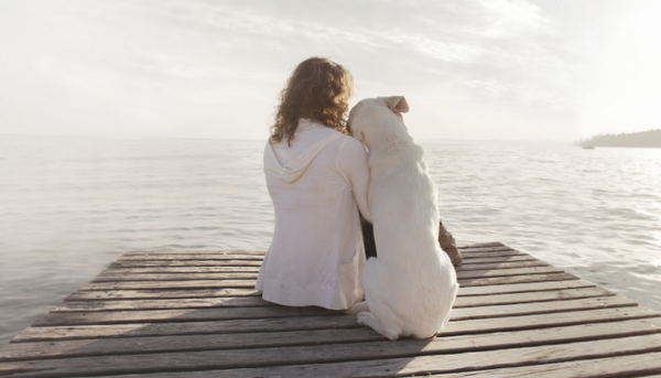 What You Need to Know About Emotional Support Dogs