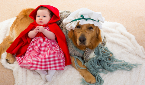 5 Pawsome Matching Halloween Costume Ideas for Dogs and Owners