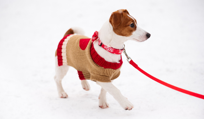 Myth: If it looks like a sweater and acts like a sweater, it's good enough.