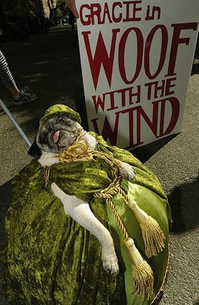 woof with the wind