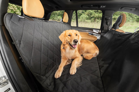 Plush Paws Premium Compact Rear Pet Seat Cover