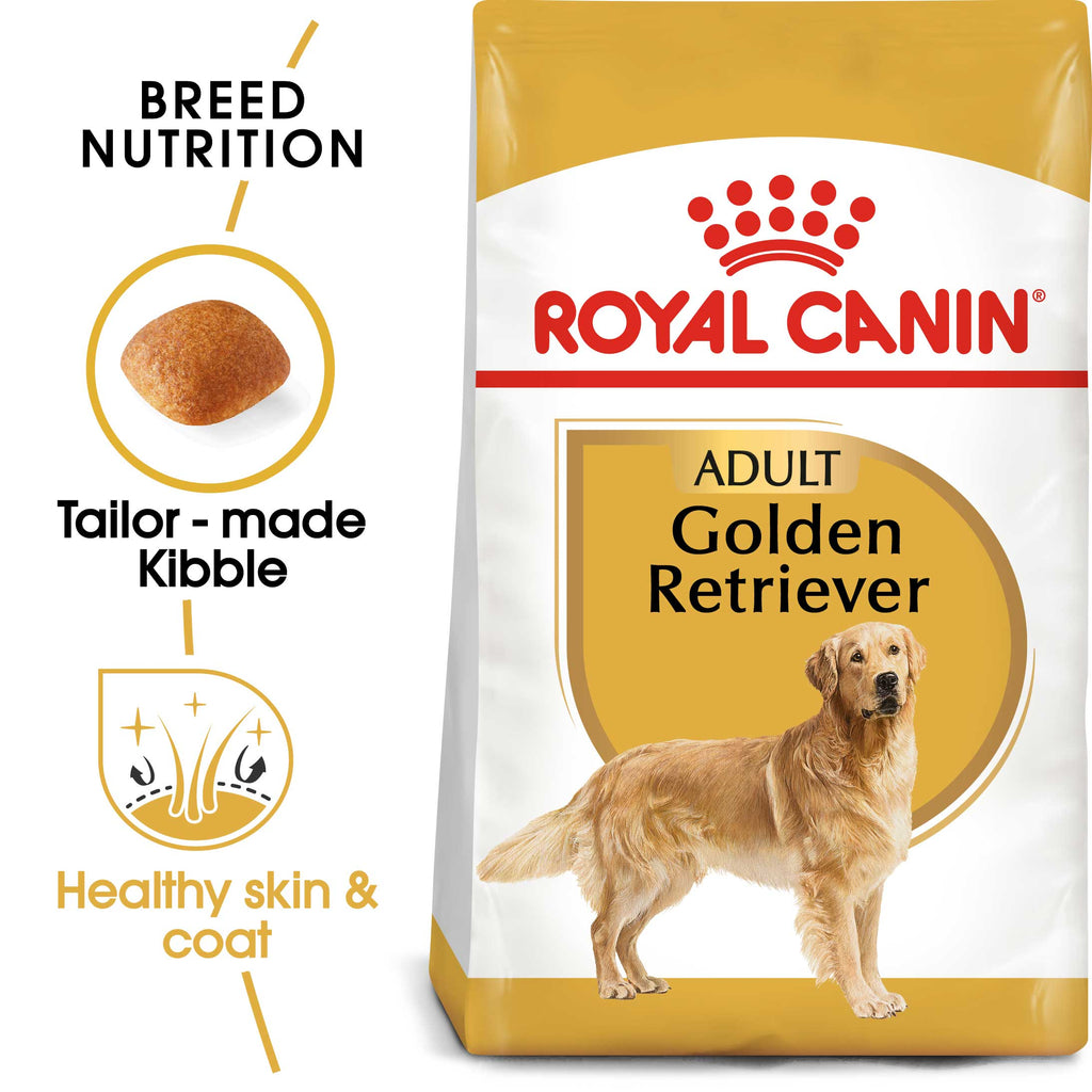 Golden Retriever 12kg