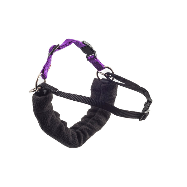 Ancol PDL Harness and Lead