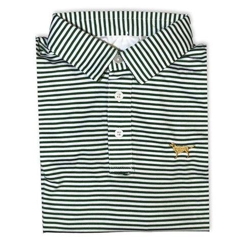 Golden Retriever Green Striped Polo