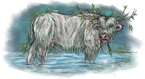 A drawing of a crodh mara - a white bull in water, with seaweed dripping off of it