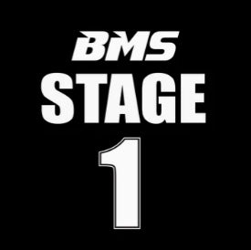 BMS Stage 1 Tuner for N63 and S63 BMW