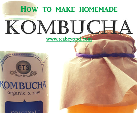 home made kombucha