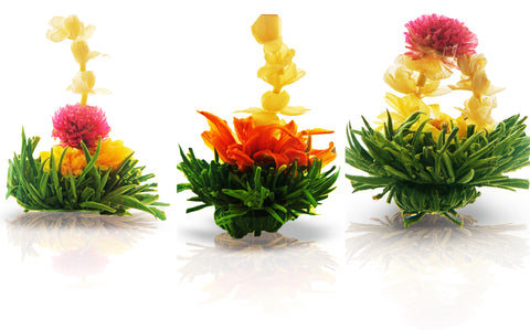 Tea Sampler Assorted Zen Flowering tea 3 packs Rose Herbal Tea 20g Mint Black Tea 20g Earthy Green Tea 20g