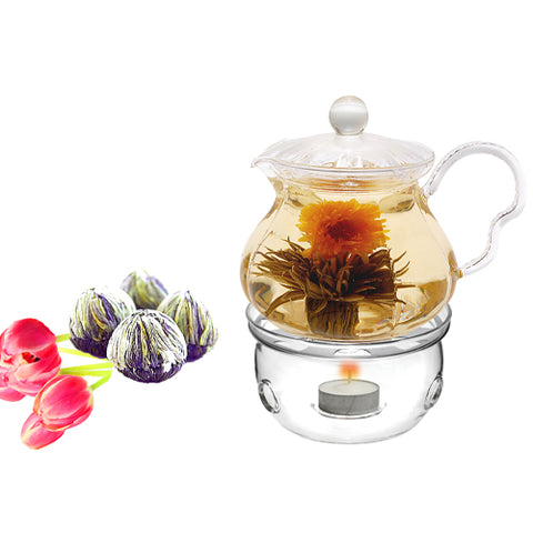 Tea Set Teapot Fairy 20 oz With Tea Warmer Cozy and Fab Flowering Tea 4 cts