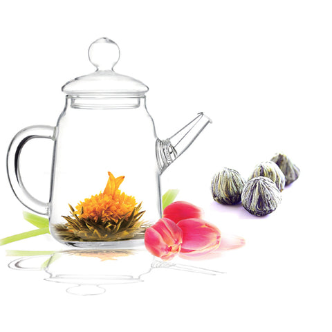 Gourmet Gift Teapot DUO and Blooming Tea 4 Cts