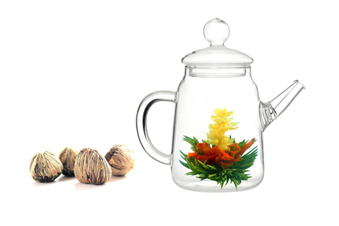 Gourmet Gift Teapot Duo and Blooming Tea Jasmine 4 Cts