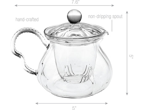 Teapot Gift Set Teapot Fairy 20 oz with Stainless Steel Tea Warmer Alex Lead Free Glass Non Drip
