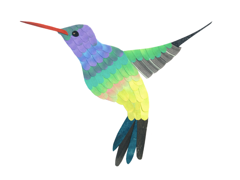 H is for Hummingbird