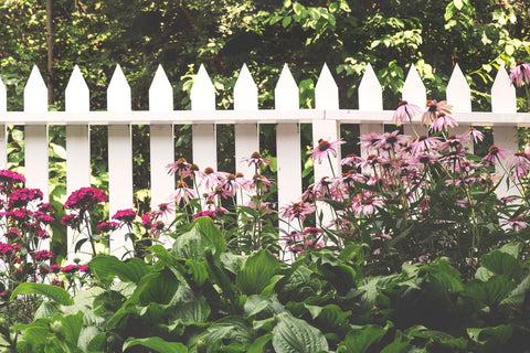 Fusion Mineral Paint Picket Fence ideal outdoor paint