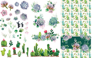 Dixie Belle Paint Decor Transfers, Belle and Whistles Decor Transfers available from approved online retailer and premium UK stockist based in Kent, Cacti and Succulents