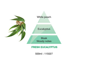 Maison Berger Fragrance - Fresh Eucalyptus - Dreams of Freshness