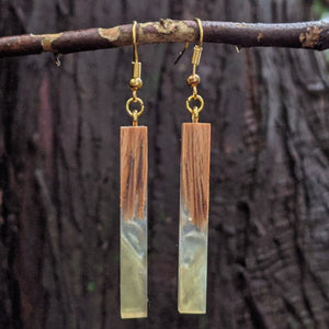 Wood & Resin Earrings #2310