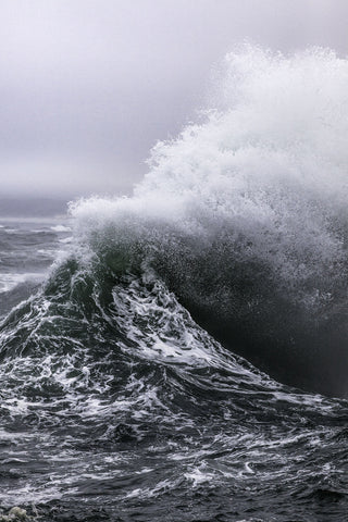 STEVEN CLOUSE: WILD OCEAN: Limited Edition Series ' Pacific City, Oregon '
