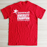 Diversity Champion 'Some People are Gay...' T-shirt