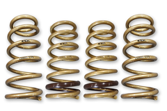 ARK Performance GT-S Lowering Springs | 2000-2009 Honda S2000 (LS0600-0105)