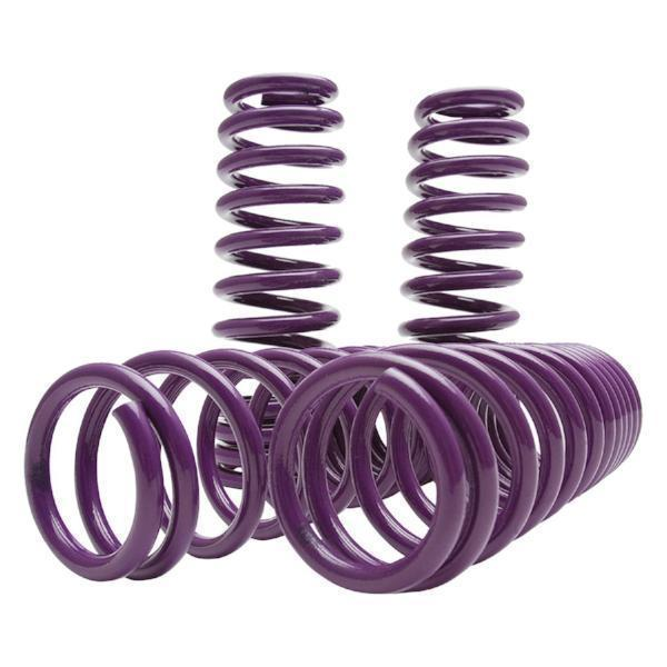 D2 Racing Lowering Springs | 94-01 Acura Integra / 92-00 Honda Civic (D-SP-HN-17)