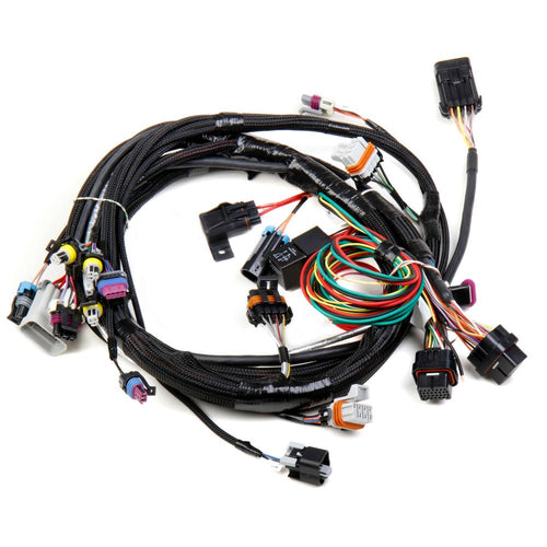 Holley HP EFI & Dominator EFI Main Harness | 1997-2004 GM LS1/6 Engines (558-102)