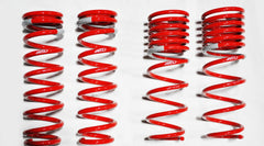 1992-1995 Honda Civic coupe Sedan DF210 Springs by Tanabe (TDF004)