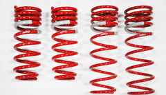 2012-2013 Toyota Yaris NF210 Springs by Tanabe (TNF169)